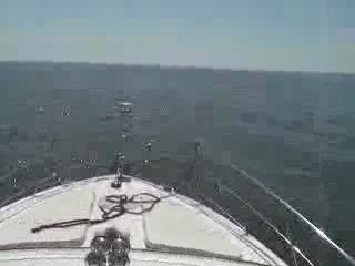 39' Carver 396 Helm View Running on Plane Video Preview from:DotComd
